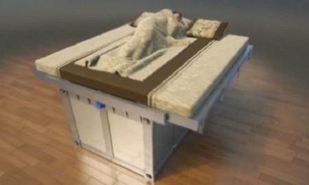 Earthquake Prediction bed