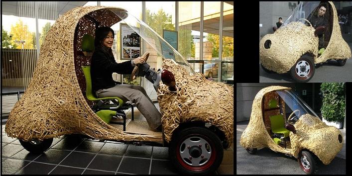 japan Bamboo Car1