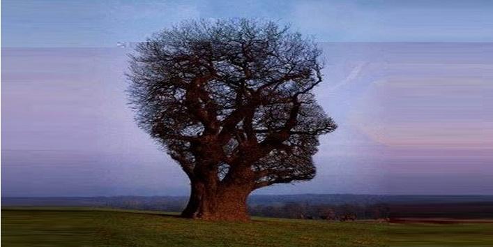 Tree Art5