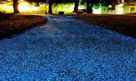 lighting road1
