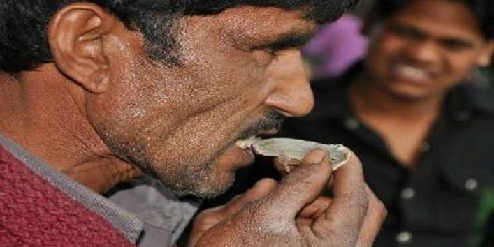 Men Eats Lizard,Lizard,Madhya pradesh,1