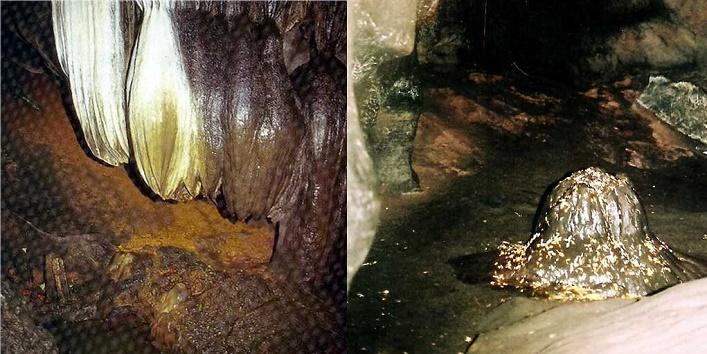 udayagiri-and-khandagiri-cavescavesbhubaneswarodisha-india2