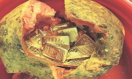 gold-papaya-found-in-delhi