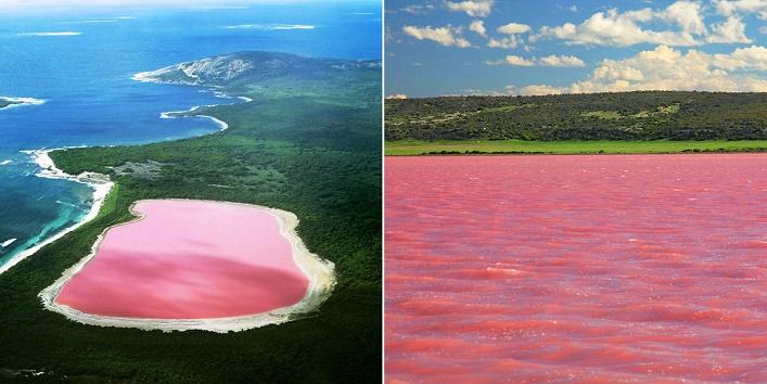 lake-hillierlake-in-western-australia-australiapink-lake-western-australia