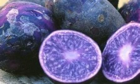 purple-potato