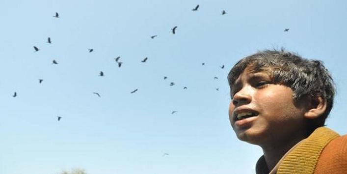 9year-old-ragpicker-is-in-demand-during-pitru-paksha cover