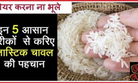 प्लास्टिक चावल