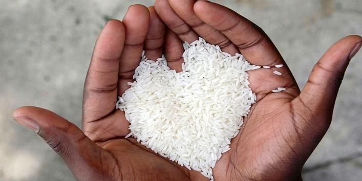 चावल के दाने