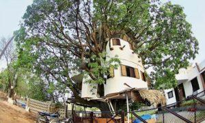 इस इंजीनियर ने बना डाला पेड़ पर 4 मंजिला घर, 18 साल से रह रहा है यहां