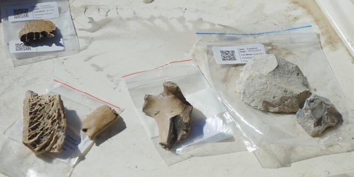 खुदाई में मिले कटाई के उपकरण